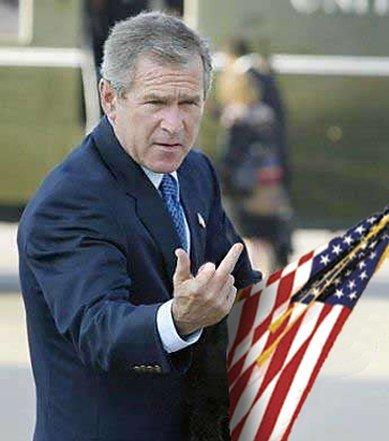 bushflagfinger1