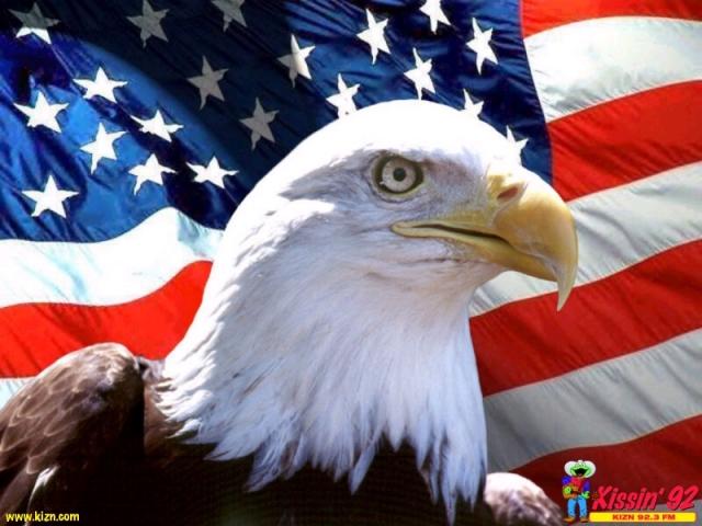 eagleandamericanflag1