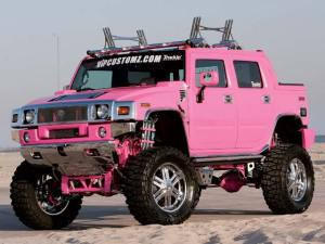 PINK REDNECK RIDE