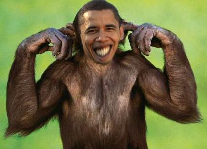 obama_monkey_nigger