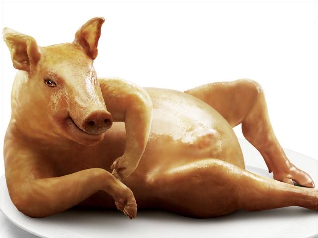 Seductive pig